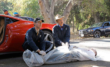 NCIS Review: Medal of Honor and a Ferrari