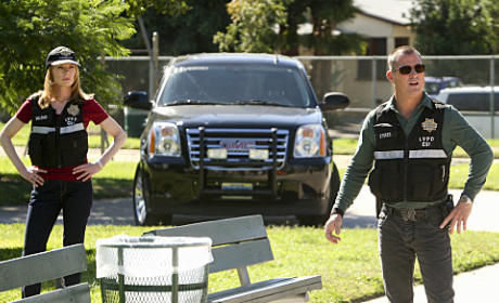 CSI Review: Serious, Gray Matters