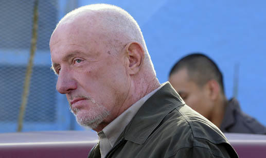 Jonathan Banks Photo