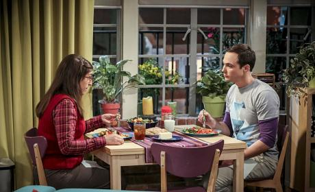 Cohabitation Continues - The Big Bang Theory Season 10 Episode 6