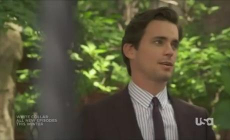 White Collar Summer Season Report Card: A-