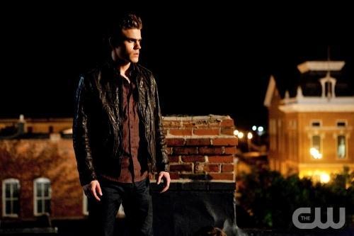 Stefan Picture
