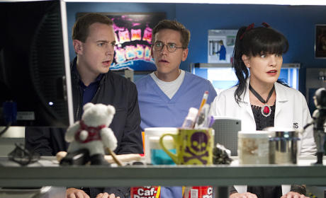 Shocked and Confused - NCIS