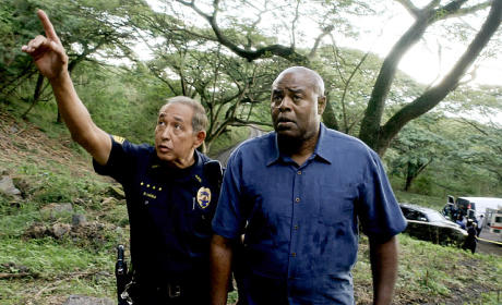 Hawaii Five-0 Season 5 Episode 20 Review: Instinct
