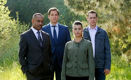 NCIS Season 11: Our Wish List