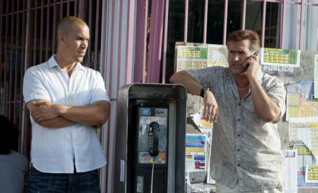 Burn Notice Spinoff: Who's Up For It?