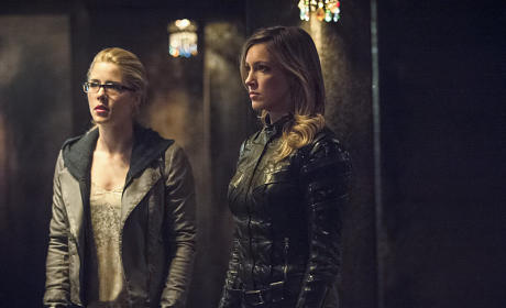 Looking for Answers - Arrow Season 3 Episode 22