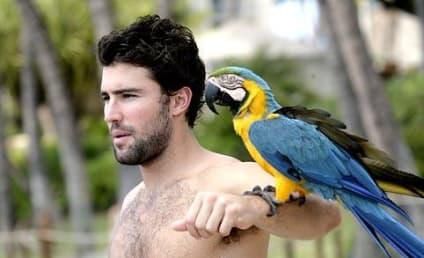 Brody Jenner, Parrot Celebrate Bro's B-Day