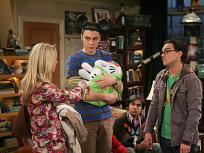 The Big Bang Theory Season 3 Episode 20