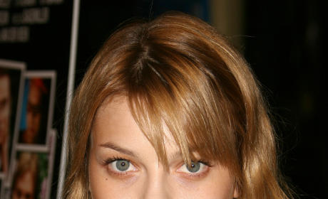 Lauren German to Play New Agent on Hawaii Five-O
