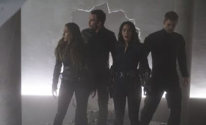 Agents of S.H.I.E.L.D. Season 3 Episode 17 Review: The Team