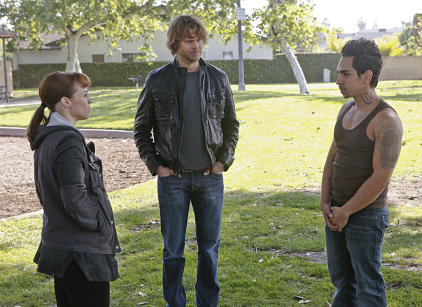 Watch NCIS: Los Angeles Season 5 Episode 20 Online