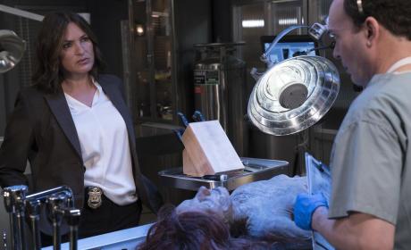Law & Order: SVU Season 17 Episode 1 Review: Devil's Dissection