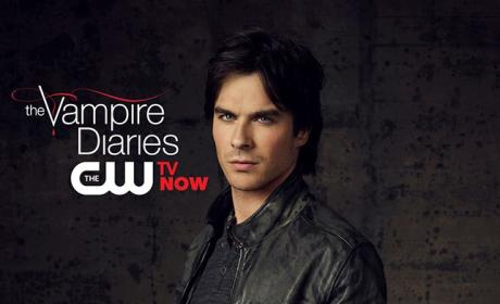 Happy Valentine's Day from Damon Salvatore, CW Stars