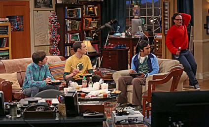 The Big Bang Theory: Watch Season 7 Episode 8 Online