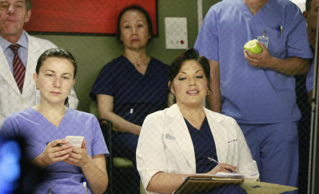 Grey's Anatomy: Watch Season 11 Episode 19 Online