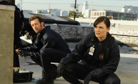 Hodgins and Brennan