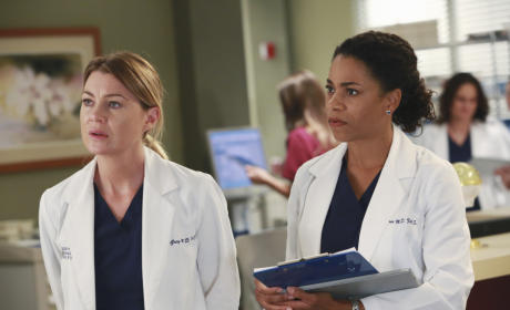 Sisters at Work - Grey's Anatomy