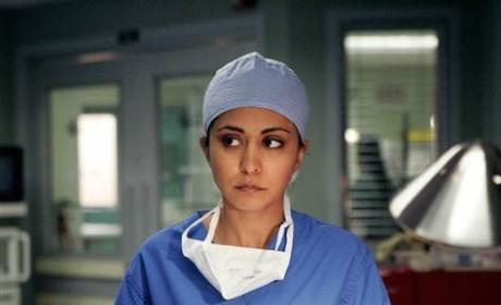 Psych Season 7 Casting Scoop: Parminder Nagra As...