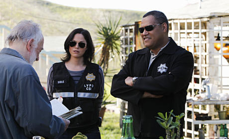 "CSI Review: ""Turn On, Tune In, Drop Dead"""