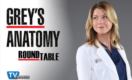 Grey's Anatomy Round Table: Spring Cleaning