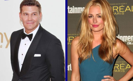 Tournament of TV Fanatic: David Boreanaz vs. Cat Deeley!