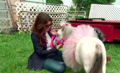 Watch The Real Housewives of Beverly Hills Online: Horsing Around