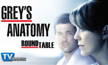 Grey's Anatomy Round Table: What Drove Meredith to Drink?