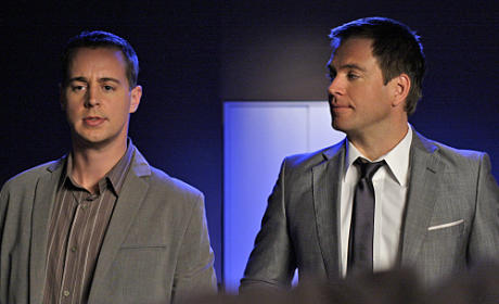 McGee and DiNozzo Picture