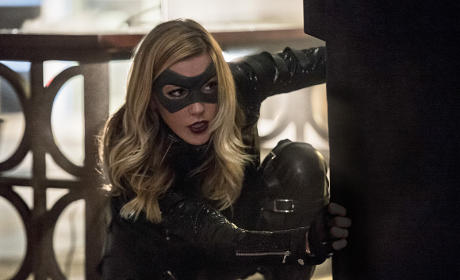 Crouching Canary - Arrow Season 4 Episode 6