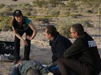 CSI Season 9 Episode 24