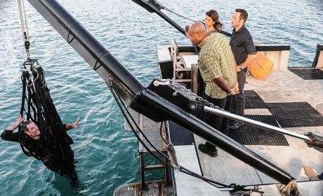 The Slave Trade - Hawaii Five-0