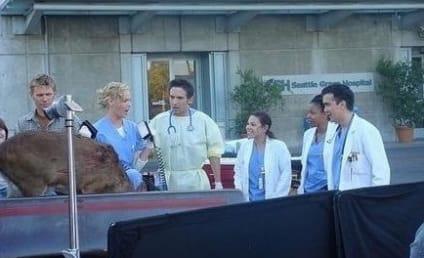 Grey's Anatomy Caption Contest LXXV