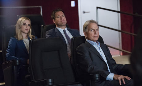 NCIS Season 14 Casting Scoop: Who's Tess?