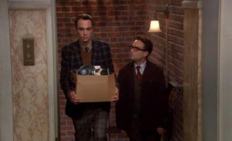 Sheldon Gets Fired