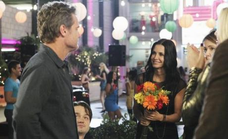 Cougar Town Review: The Usual Laughter