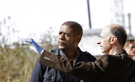 "Criminal Minds: Suspect Behavior Review: ""Jane"""