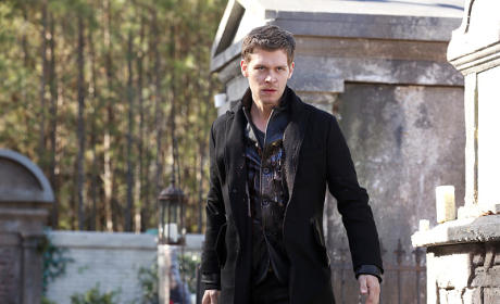 Very Angry Hybrid - The Originals Season 2 Episode 15