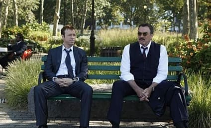 """Blue Bloods Review: """"Friendly Fire"""""""