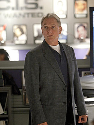Agent Gibbs Pic