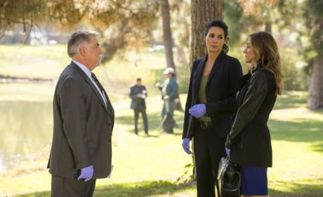 Rizzoli & Isles Review: Mother's Instinct