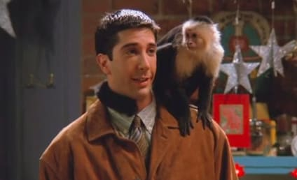 27 Most Precious Pets in TV History