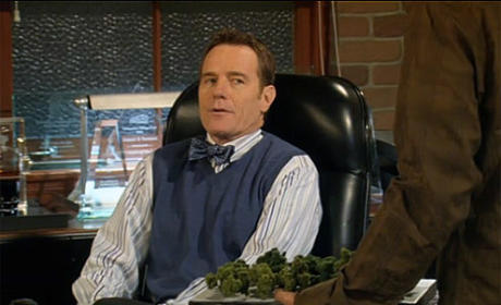 Bryan Cranston to Reprise Role on How I Met Your Mother