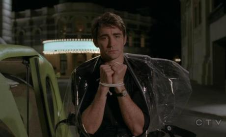 Pushing Daisies Ratings Drop Slightly