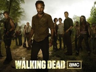 The Walking Dead Cast Picture