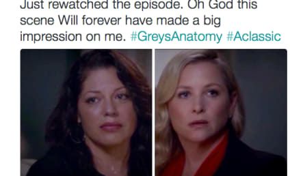Grey's Anatomy Fans React to Calzona Breakup With Despair, Hope on Twitter