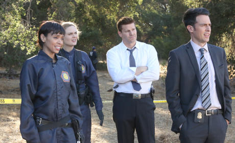 Bones: Renewed for Season 11!!