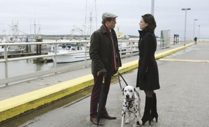 Once Upon a Time Review: Playing Cricket