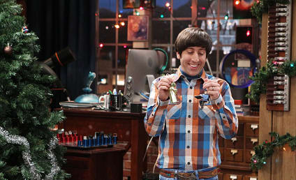 The Big Bang Theory: Watch Season 7 Episode 11 Online