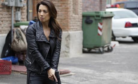 Watch Agents of S.H.I.E.L.D. Online: Season 3 Episode 15